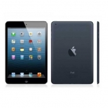 Apple iPad mini All